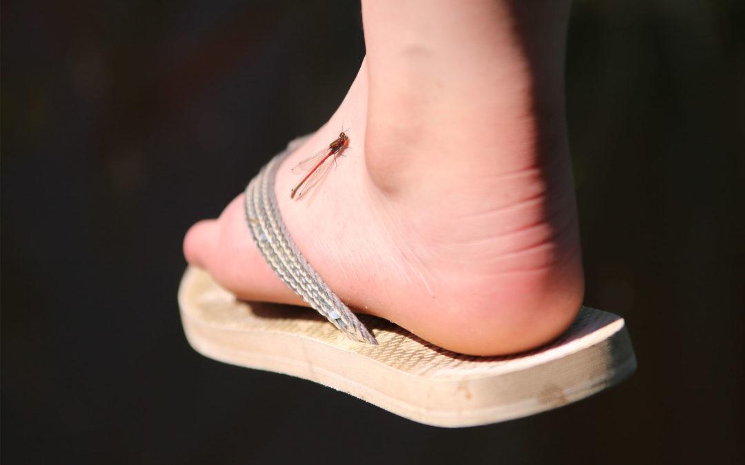 Kriebelige voet