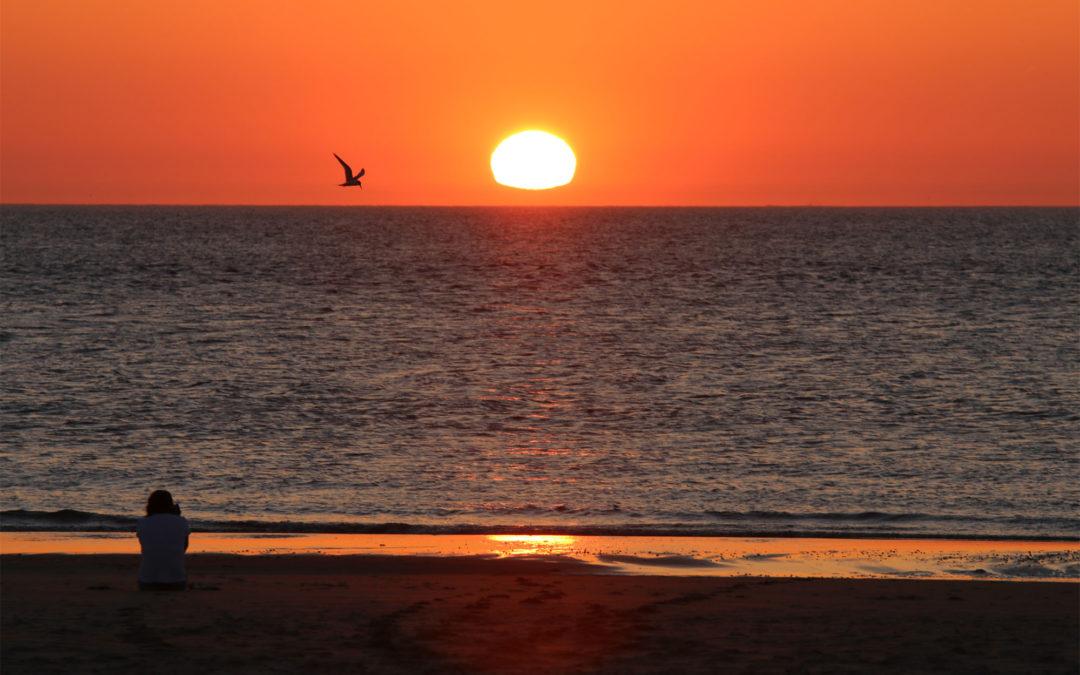 Ondergaande zon op Texel