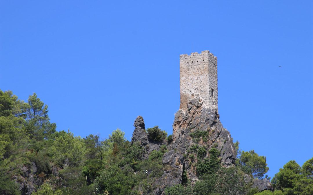 Torentje